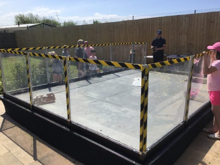Robot Fighting Arena outside